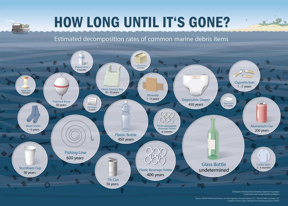 https://4ocean.com/blogs/blog/how-long-does-it-take-trash-to-biodegrade